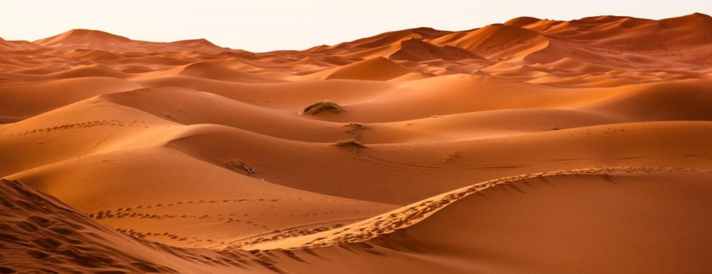 Touchand Maroc