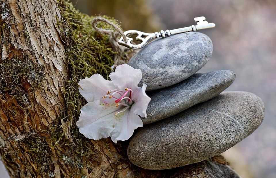 profitez d'une retraite spirituelle en automne avec touchand bien être
